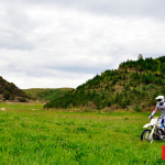 nz_it_ride_278_